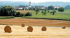 Kirch-Dinhard
